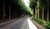 절물자연휴양림 숲길산책로 만족도 만점